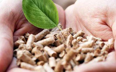 Какво представляват дървесните пелети и как да изберем по-добрите